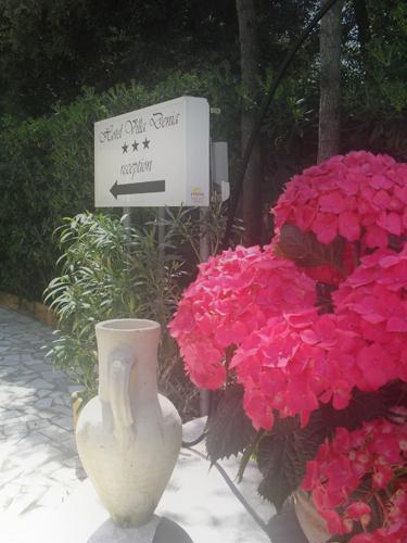 hotel-san-vincenzo-giardino-foto-3.jpg